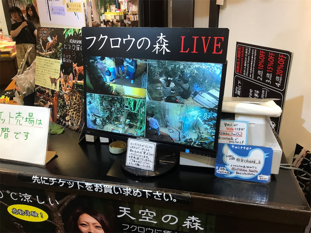f:id:yamato-mitsumoto:20180610220632j:image
