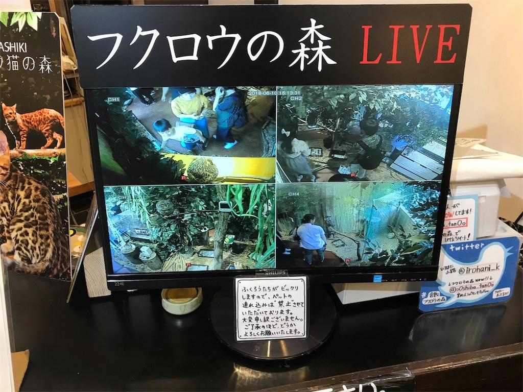 f:id:yamato-mitsumoto:20180610220808j:image