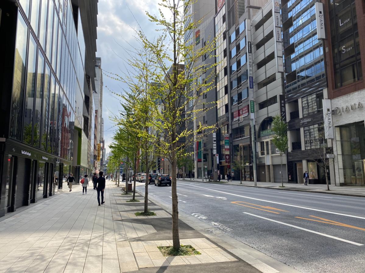 f:id:yamato-mitsumoto:20200409193246j:plain