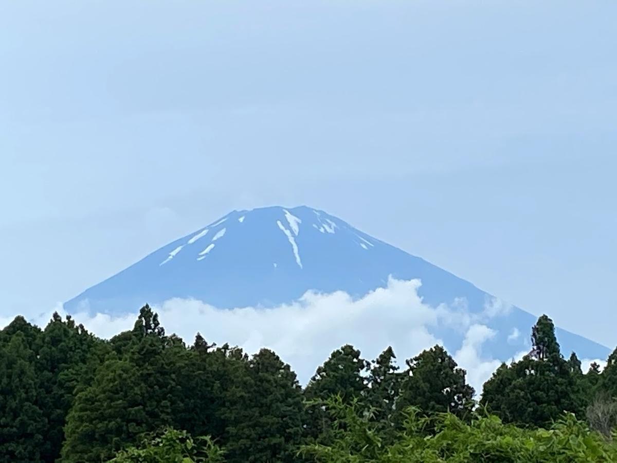 f:id:yamato-mitsumoto:20210625172751j:plain