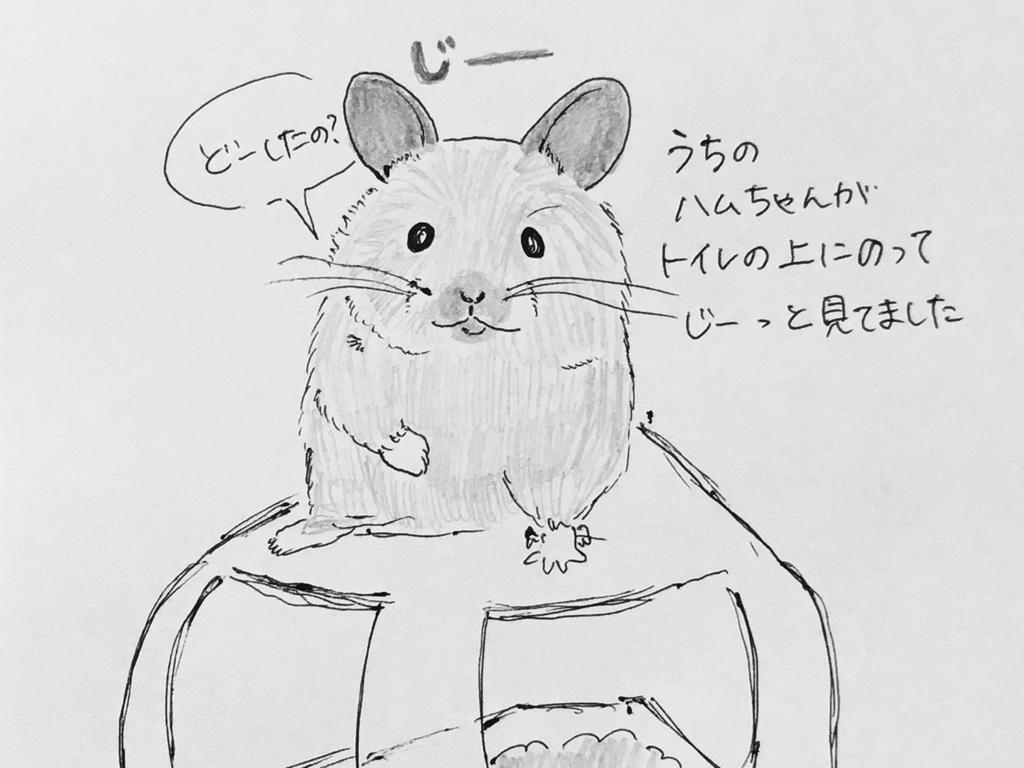 f:id:yamato0709:20180911184235j:plain