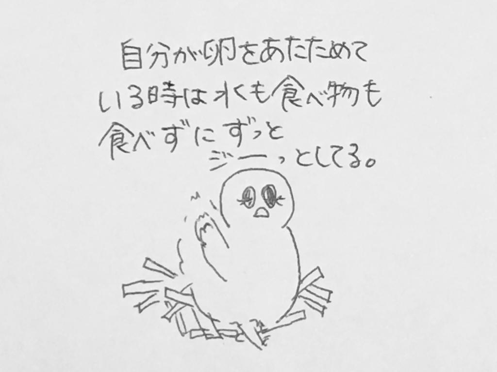 f:id:yamato0709:20180924223046j:plain