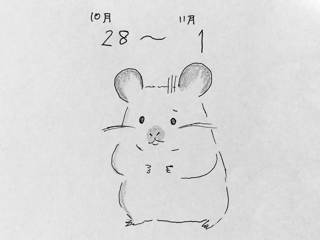f:id:yamato0709:20181107150406j:plain