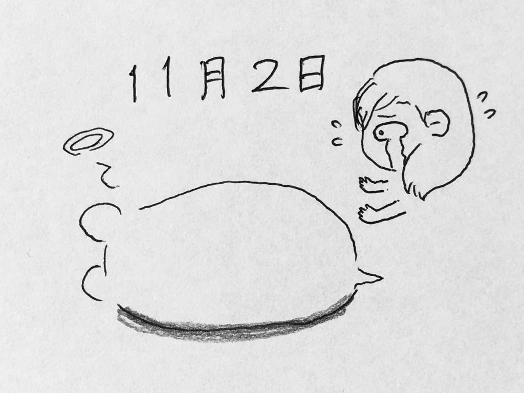 f:id:yamato0709:20181107150427j:plain