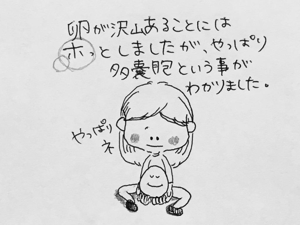 f:id:yamato0709:20181122094616j:plain