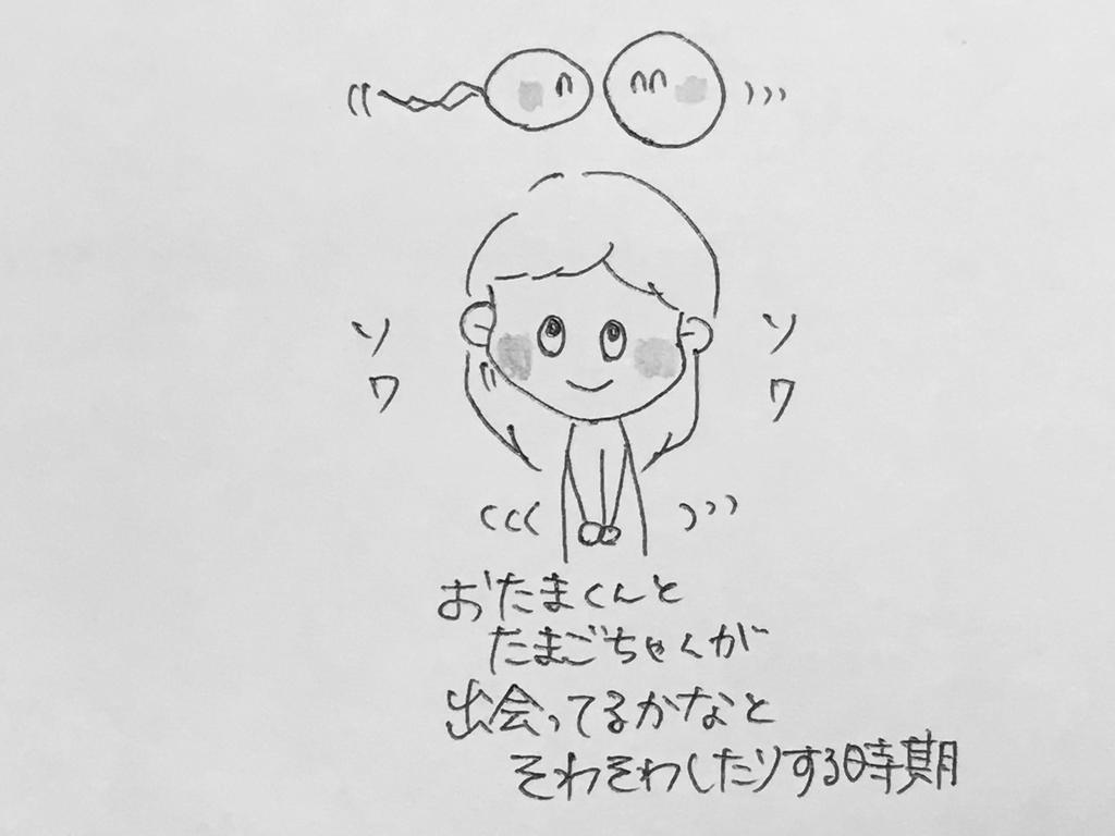 f:id:yamato0709:20181130214045j:plain
