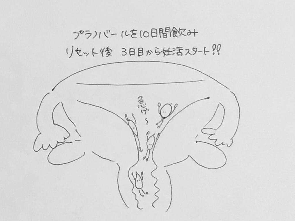 f:id:yamato0709:20190108182204j:plain