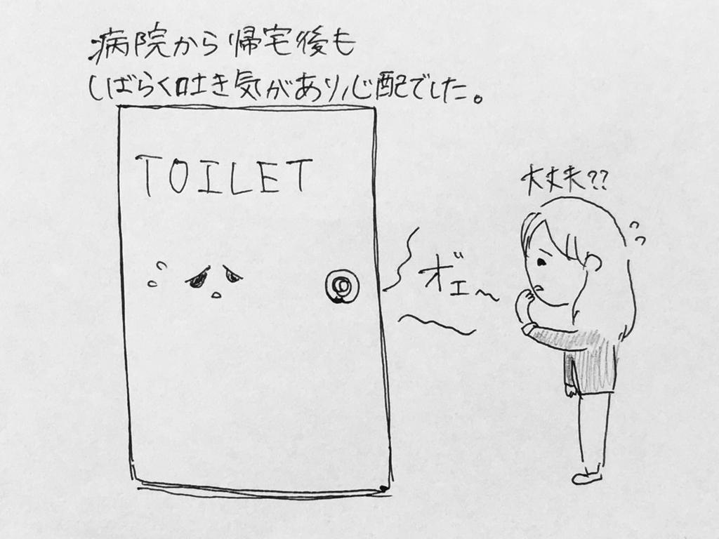 f:id:yamato0709:20190127102545j:plain