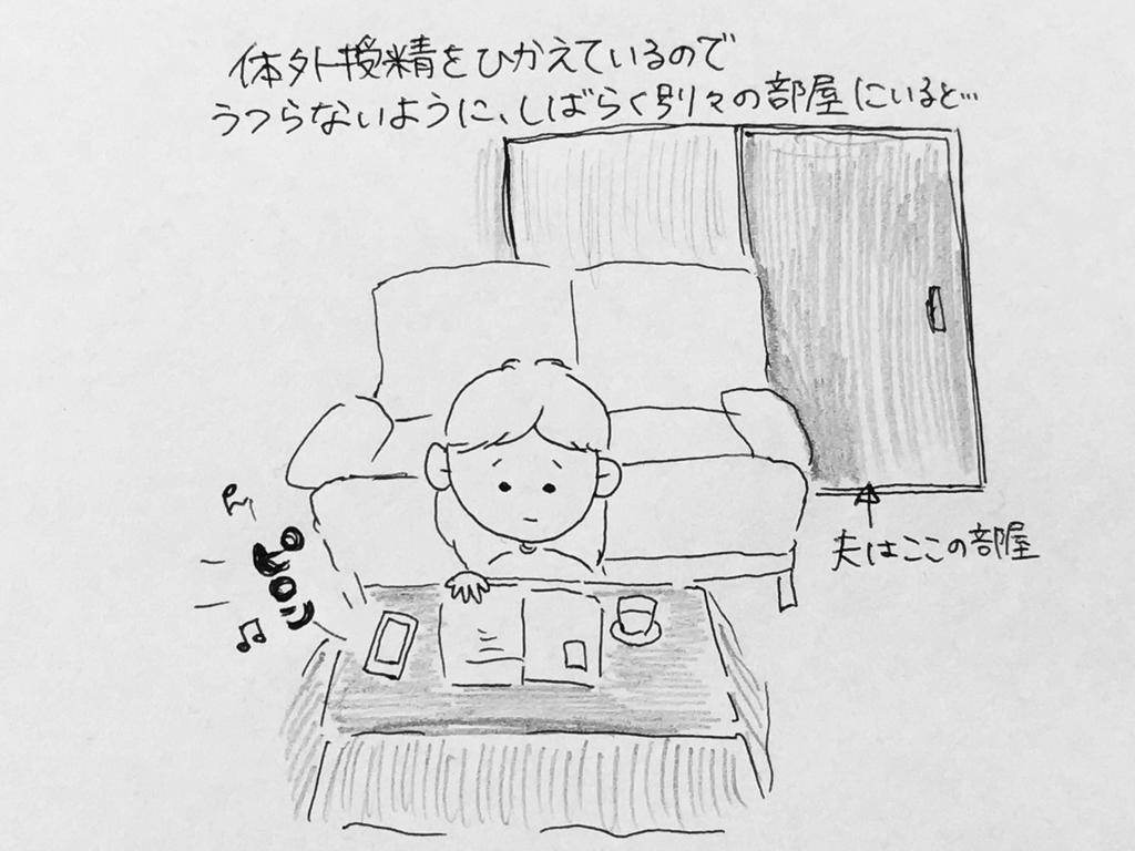 f:id:yamato0709:20190127102610j:plain