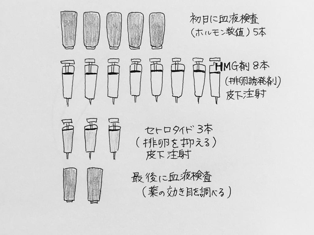 f:id:yamato0709:20190130175553j:plain