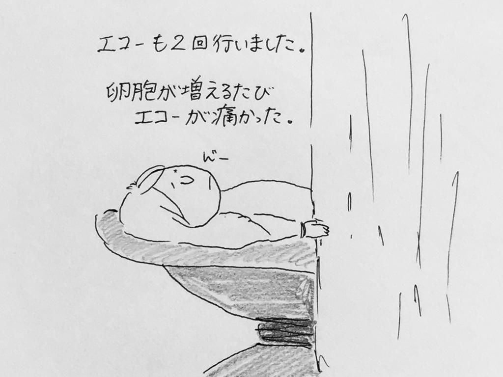 f:id:yamato0709:20190130175612j:plain