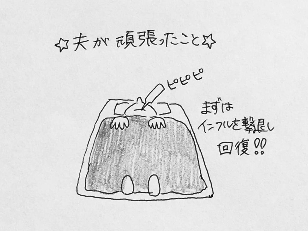 f:id:yamato0709:20190130175809j:plain