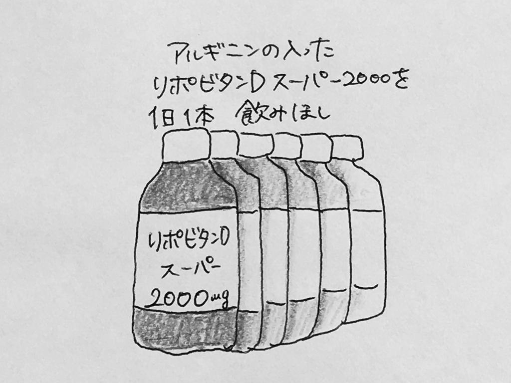 f:id:yamato0709:20190130175854j:plain