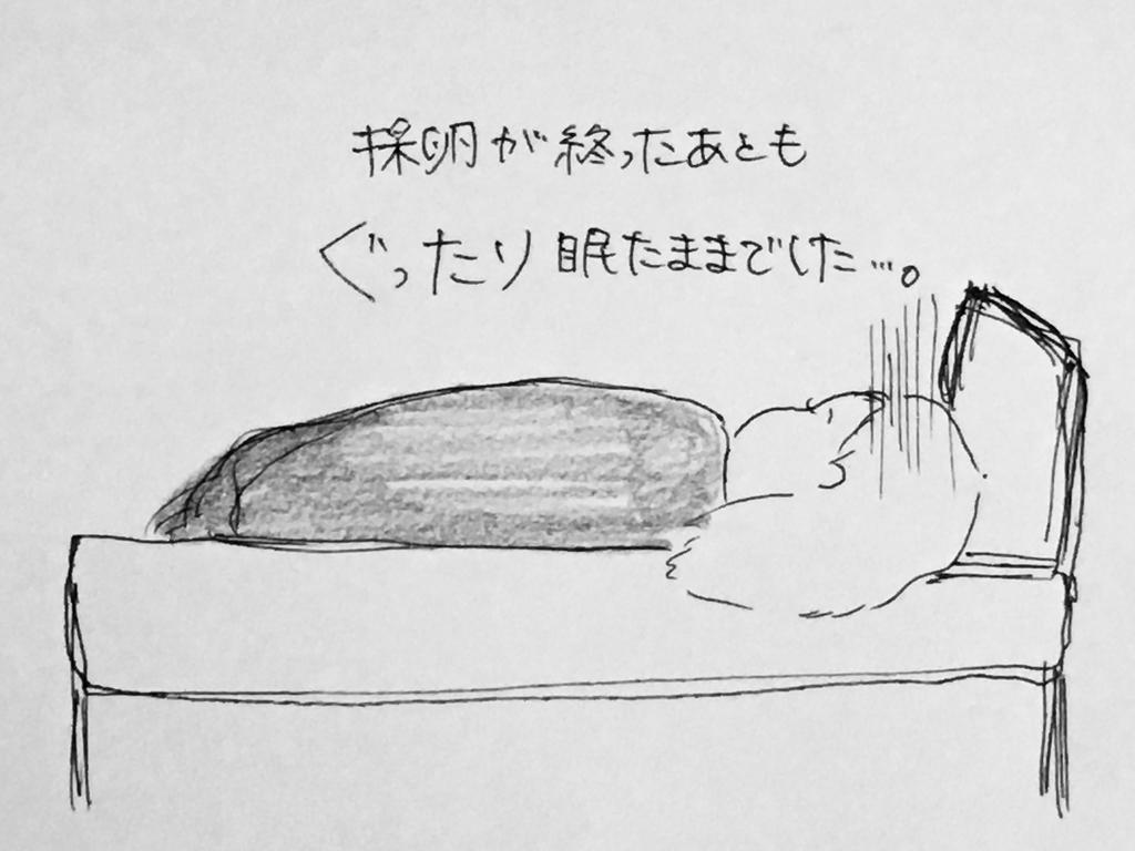 f:id:yamato0709:20190201225238j:plain