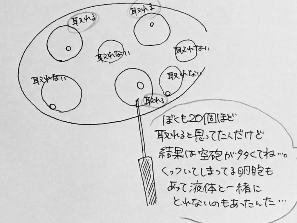 f:id:yamato0709:20190201225827j:plain