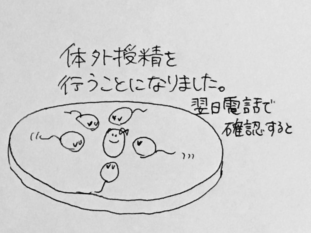 f:id:yamato0709:20190201231115j:plain