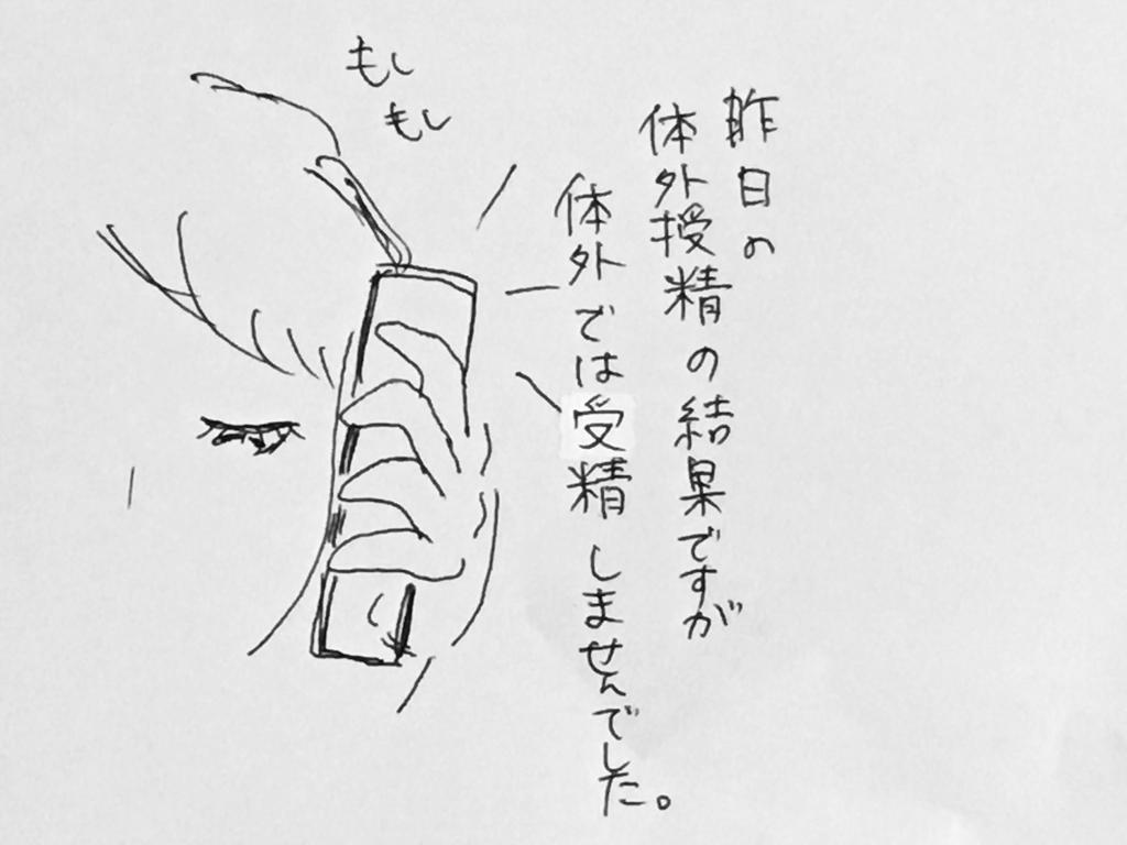 f:id:yamato0709:20190201231156j:plain