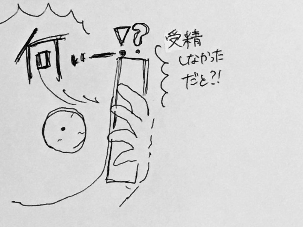 f:id:yamato0709:20190201231255j:plain