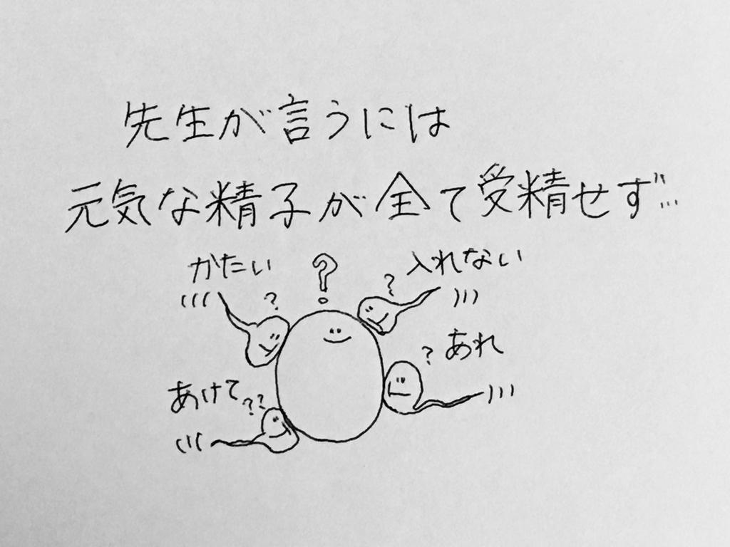 f:id:yamato0709:20190204231800j:plain