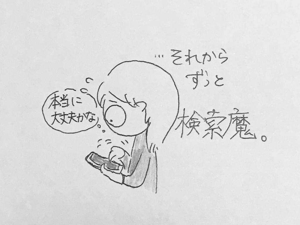 f:id:yamato0709:20190204232639j:plain