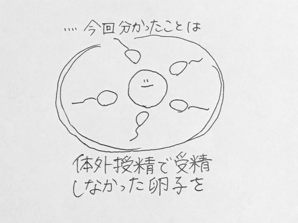 f:id:yamato0709:20190204233301j:plain