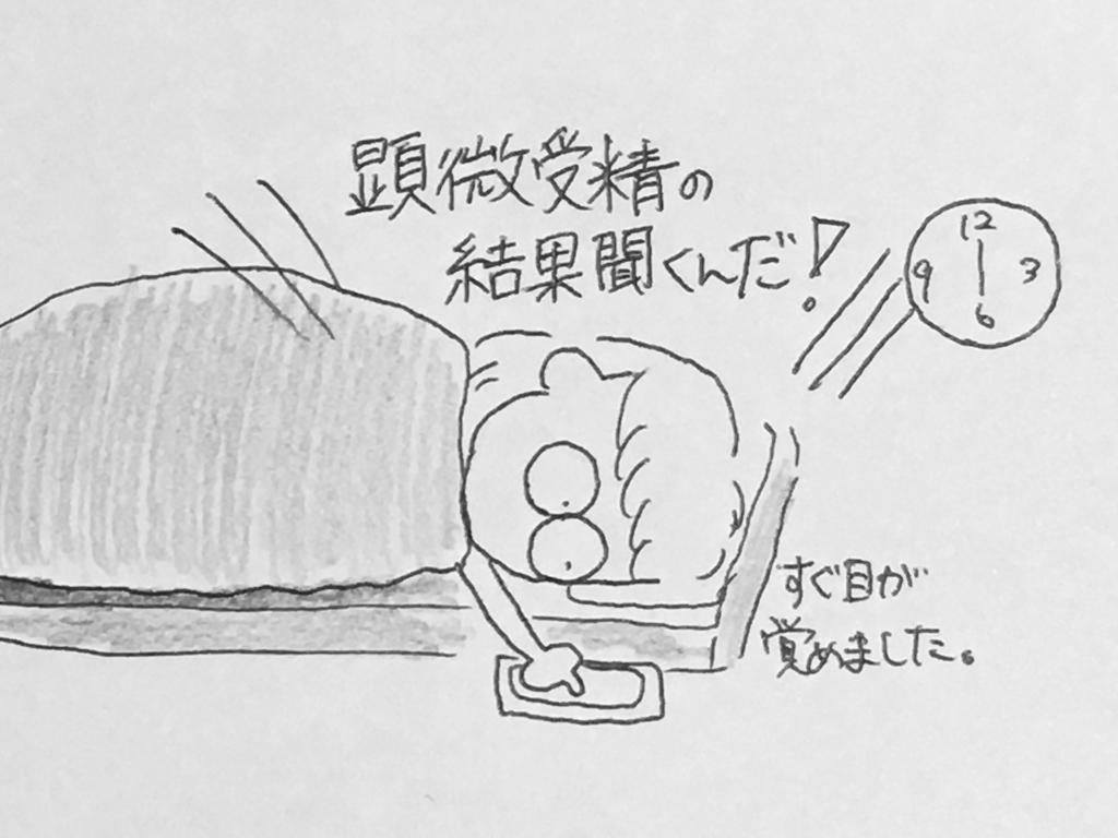 f:id:yamato0709:20190206194506j:plain