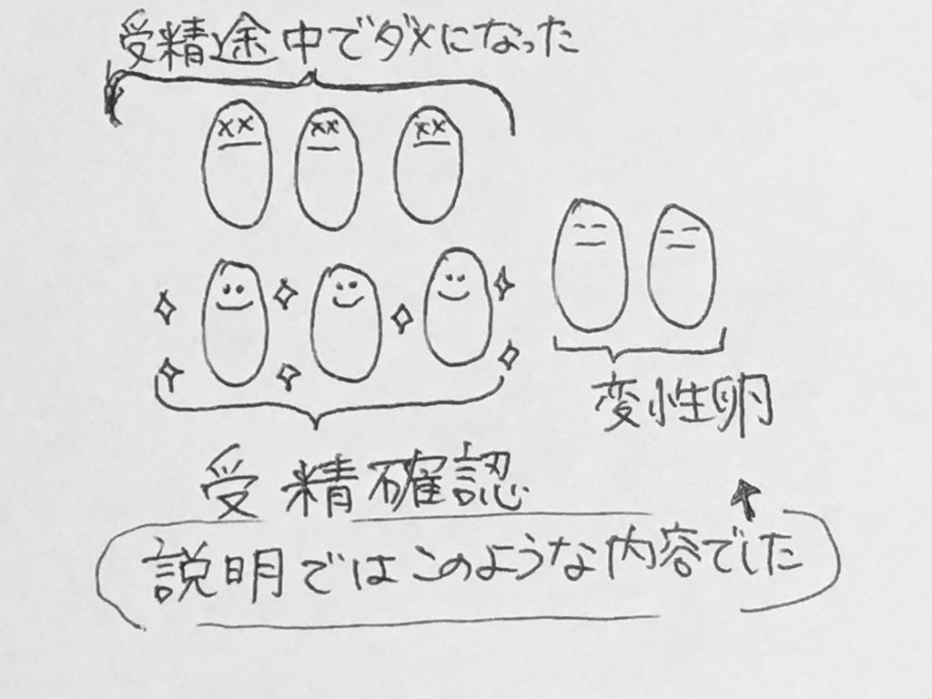 f:id:yamato0709:20190206194812j:plain