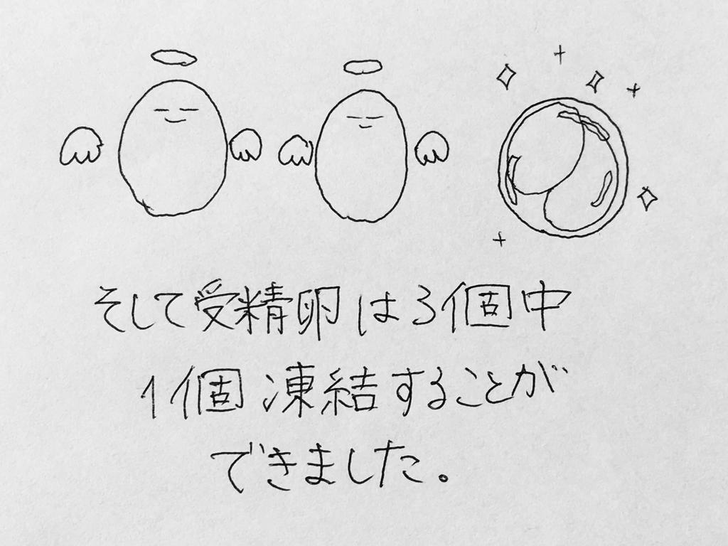 f:id:yamato0709:20190206195333j:plain