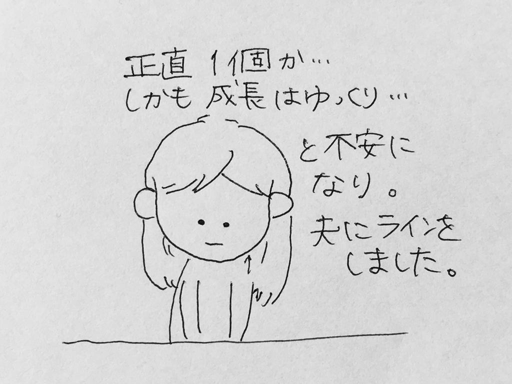 f:id:yamato0709:20190206195350j:plain