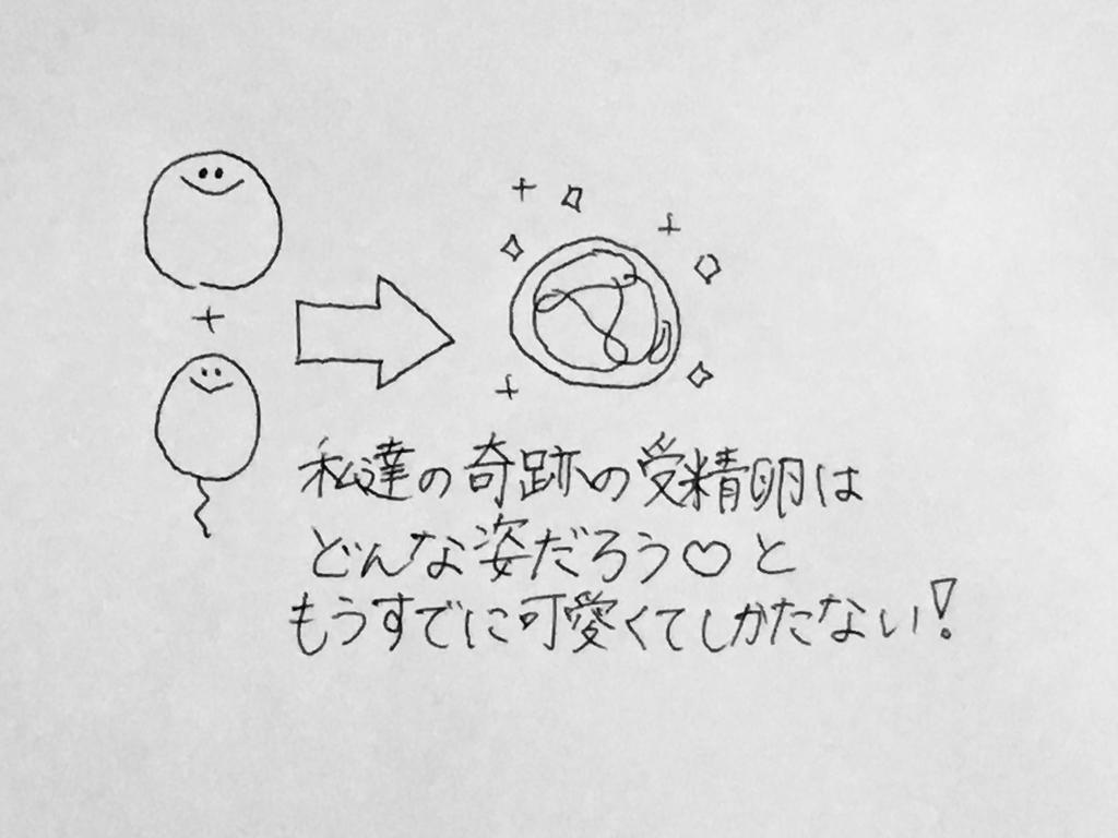 f:id:yamato0709:20190209173243j:plain