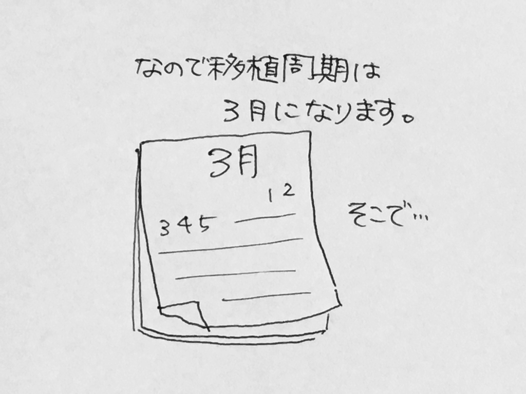 f:id:yamato0709:20190219195944j:plain
