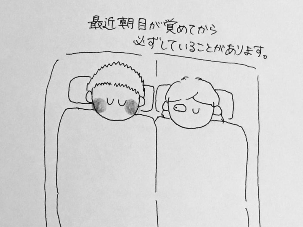 f:id:yamato0709:20190302203921j:plain