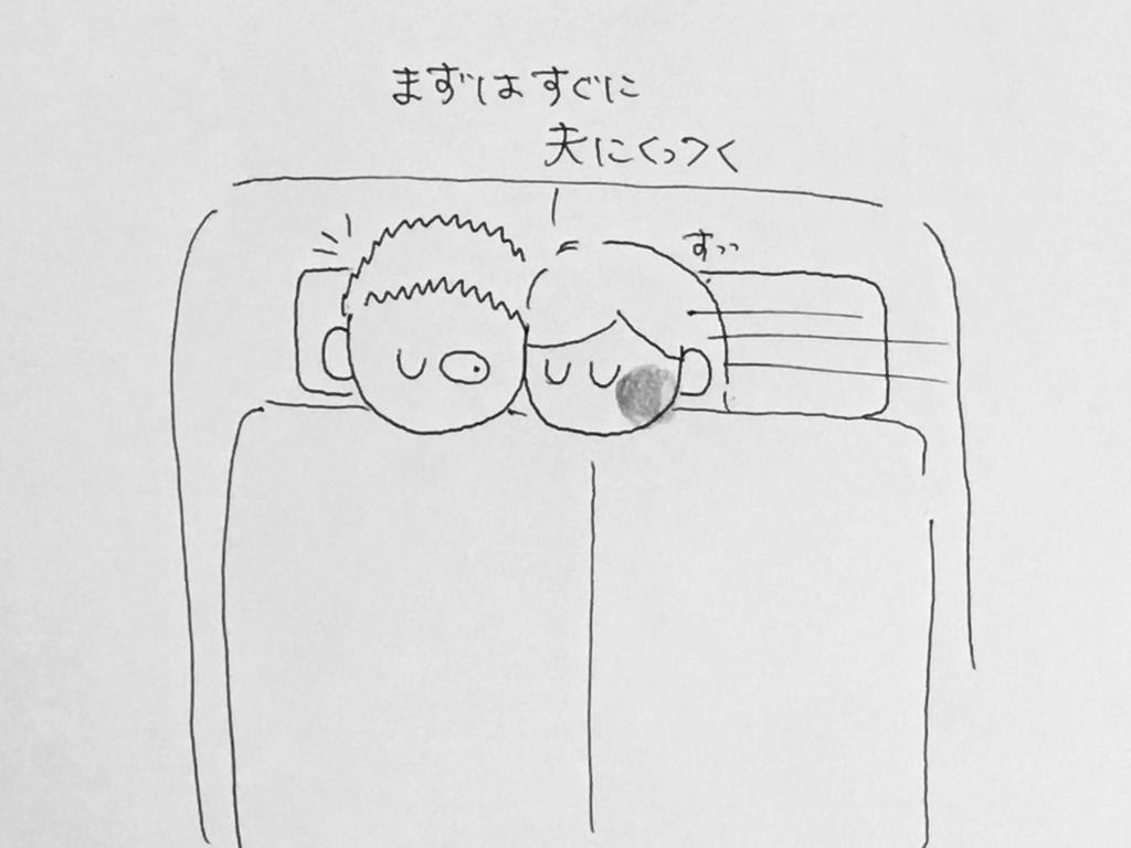 f:id:yamato0709:20190302203936j:plain