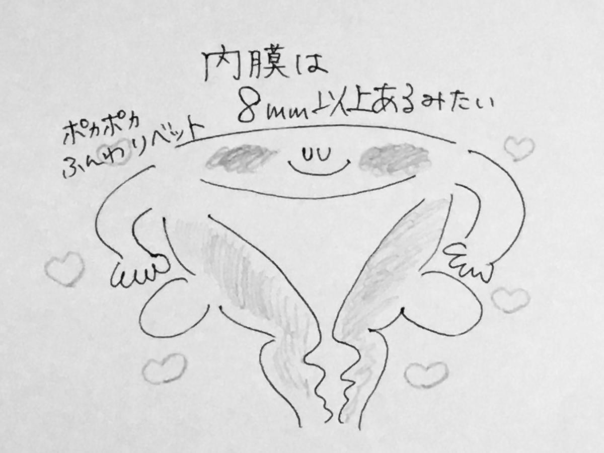 f:id:yamato0709:20190316215009j:plain