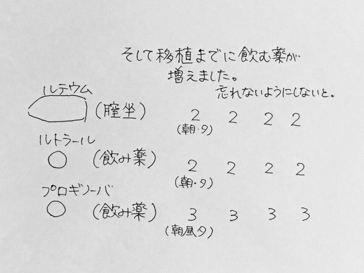 f:id:yamato0709:20190316215026j:plain