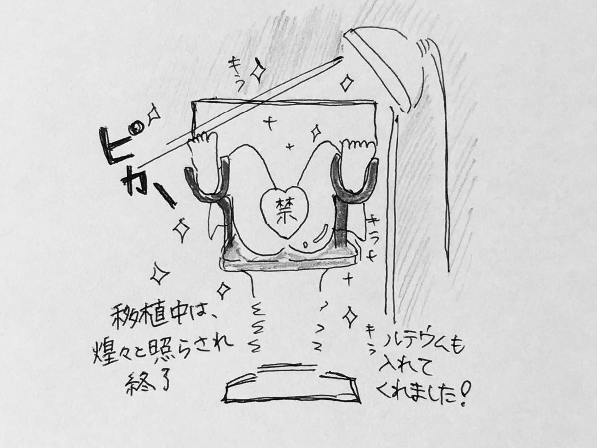 f:id:yamato0709:20190320140650j:plain