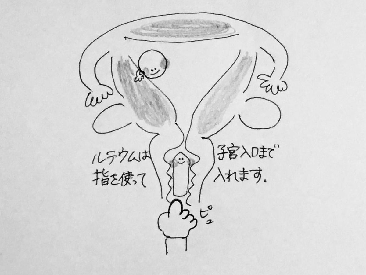 f:id:yamato0709:20190325212027j:plain