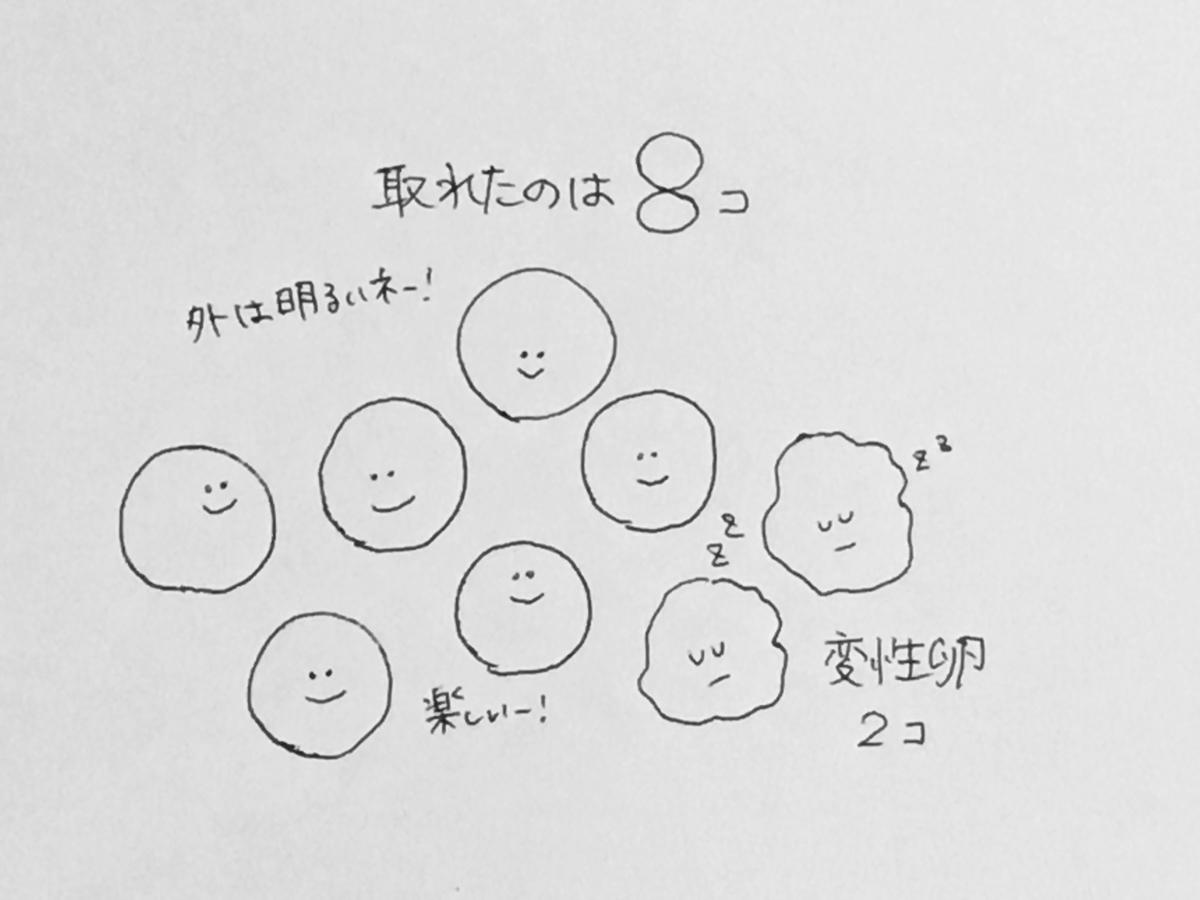 f:id:yamato0709:20190405180320j:plain