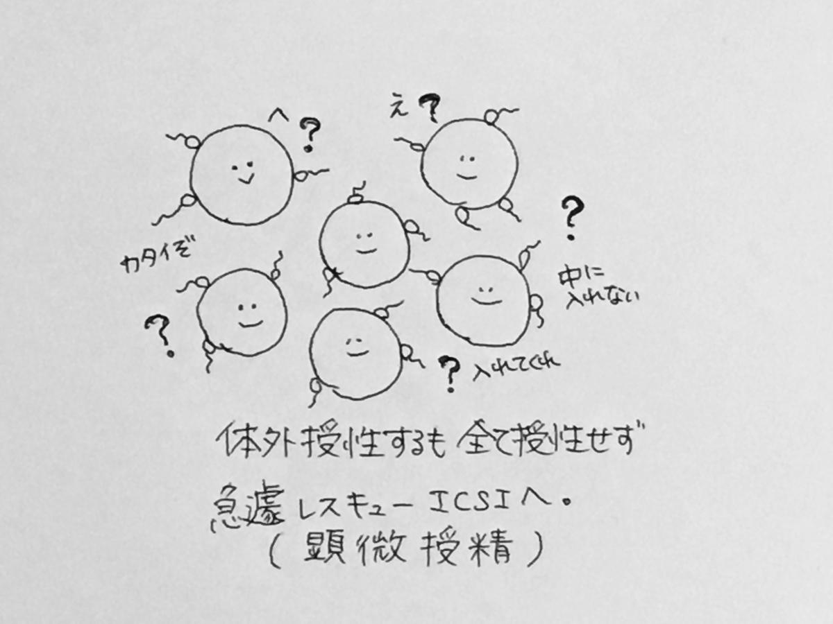 f:id:yamato0709:20190405180350j:plain