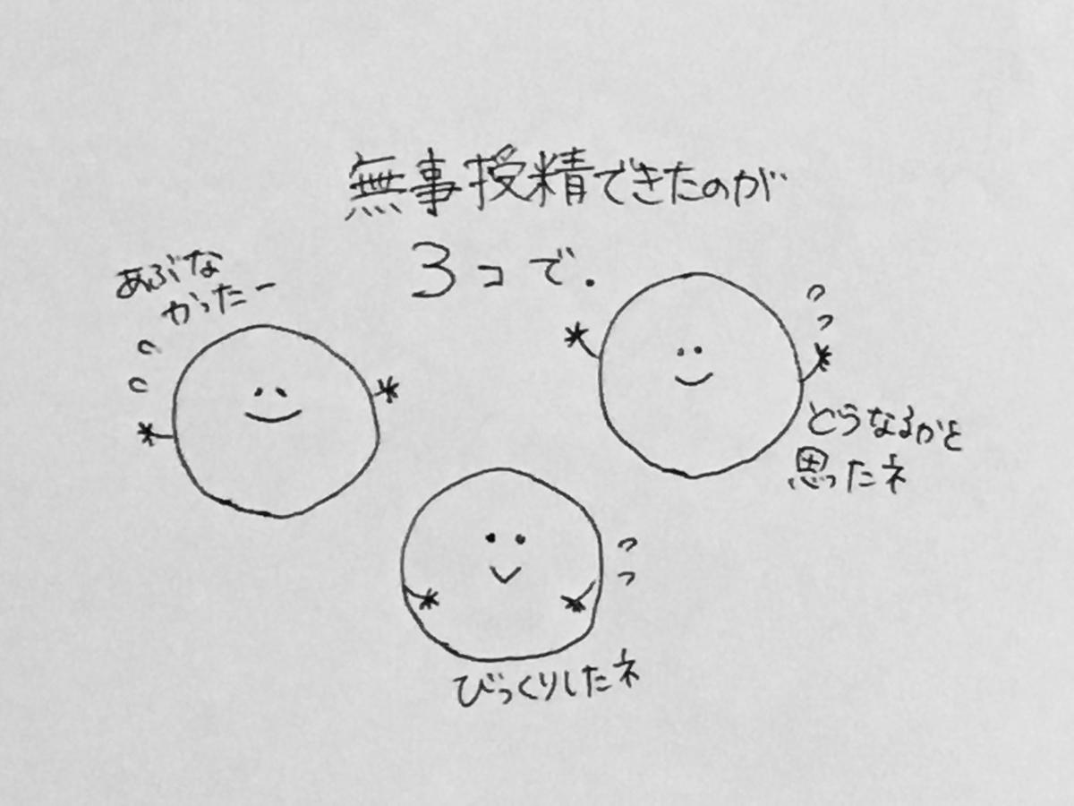 f:id:yamato0709:20190405180409j:plain