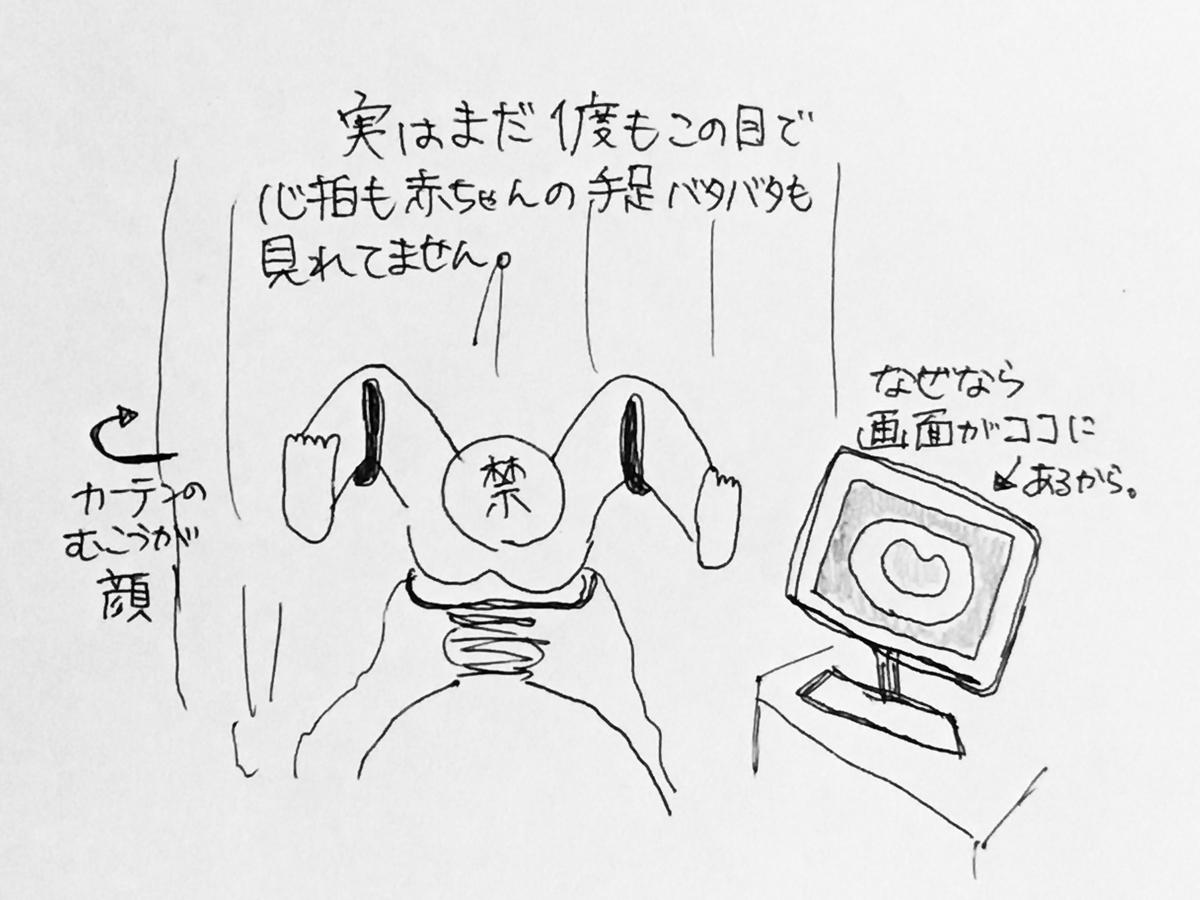 f:id:yamato0709:20190510201046j:plain