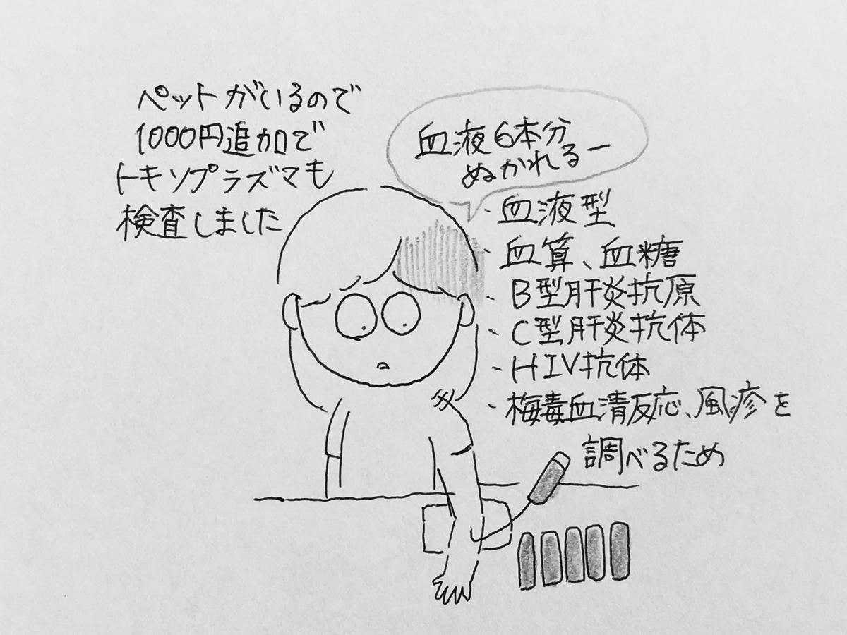 f:id:yamato0709:20190518190021j:plain