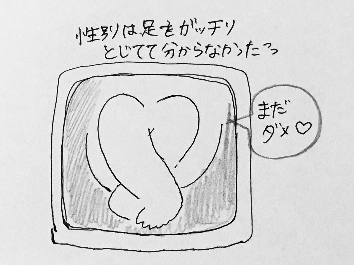 f:id:yamato0709:20190810190434j:plain