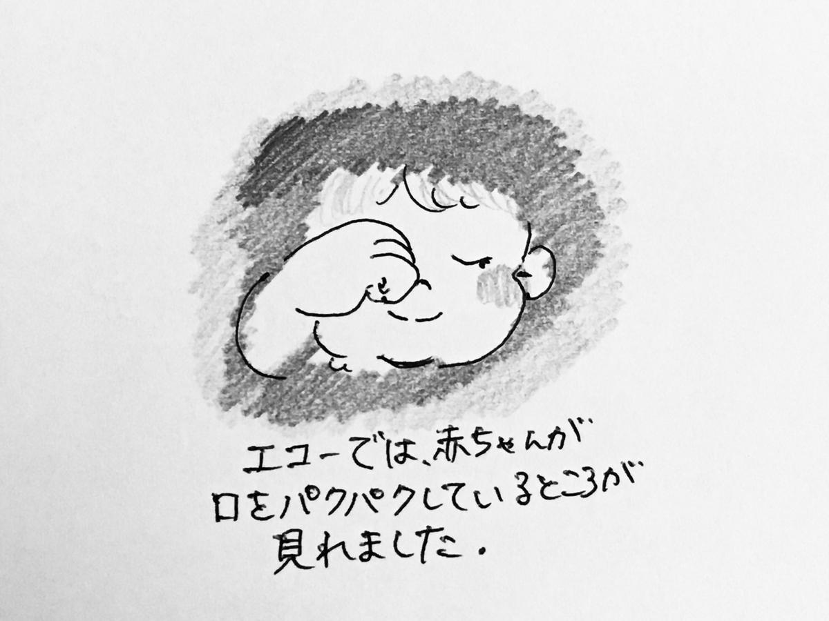 f:id:yamato0709:20190922202746j:plain