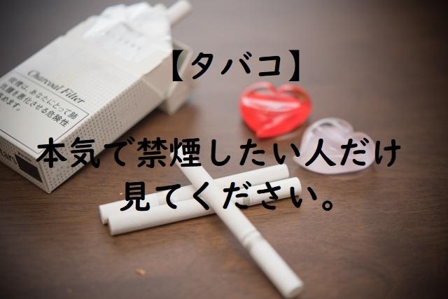 f:id:yamato0907:20180307213001j:plain