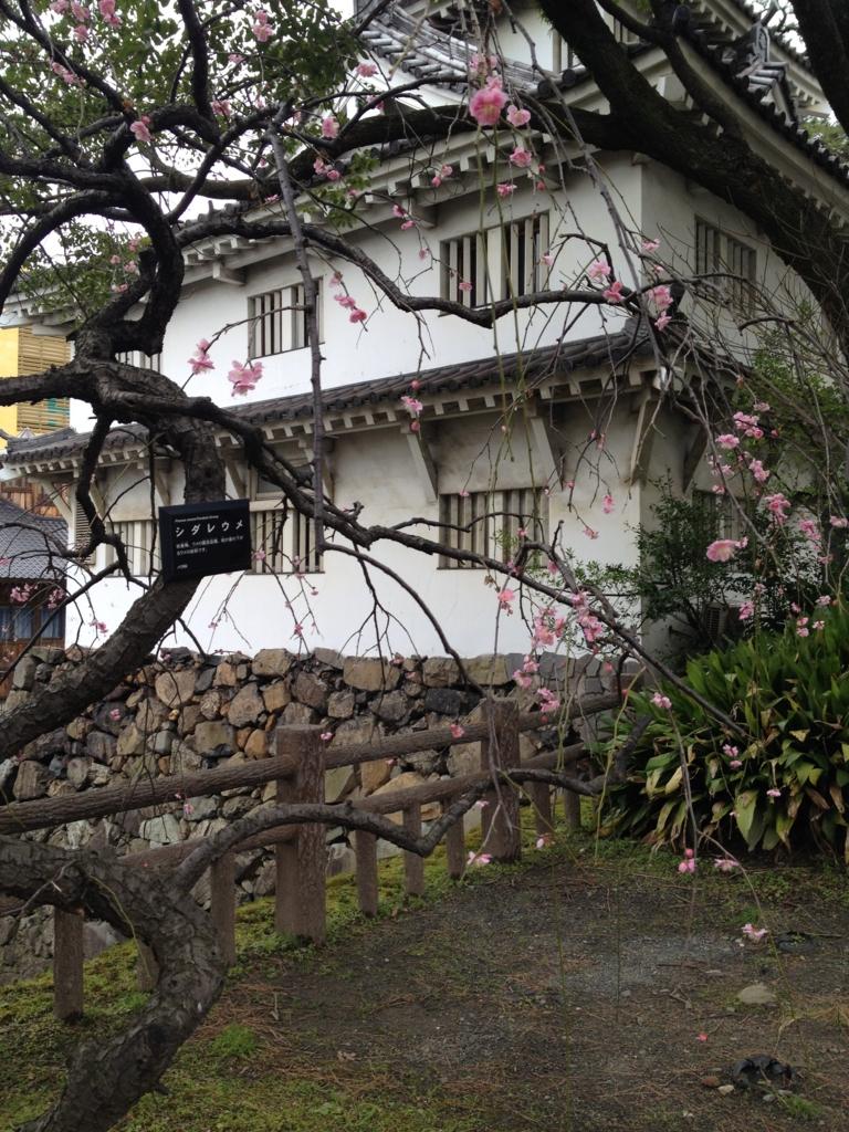 f:id:yamato1111:20160224135815j:plain