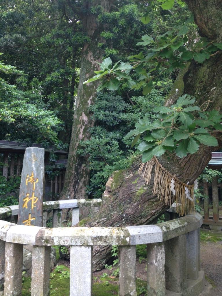 f:id:yamato1111:20160611160710j:plain