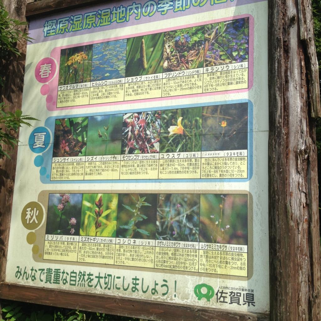 f:id:yamato1111:20160724171925j:plain