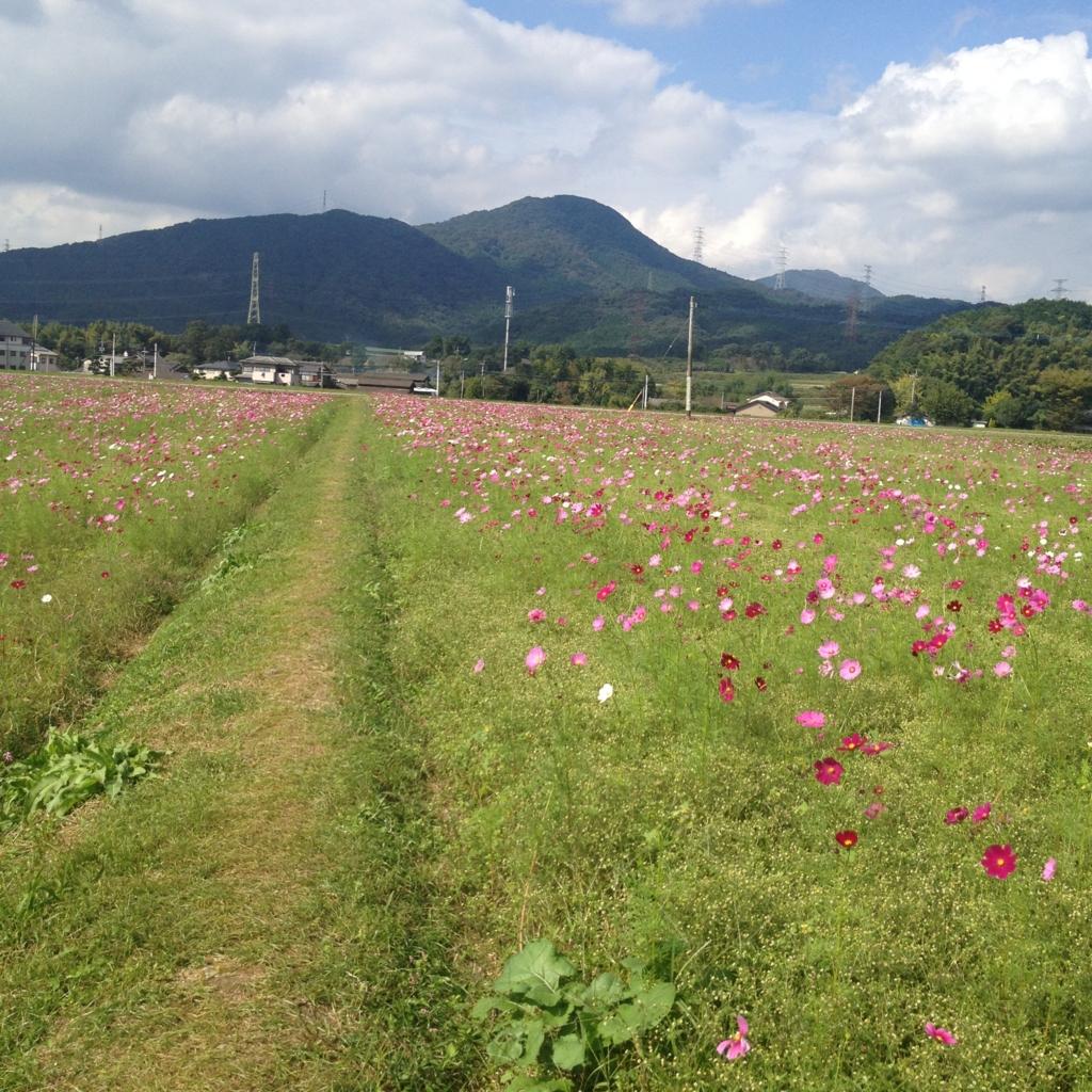 f:id:yamato1111:20161018160403j:plain