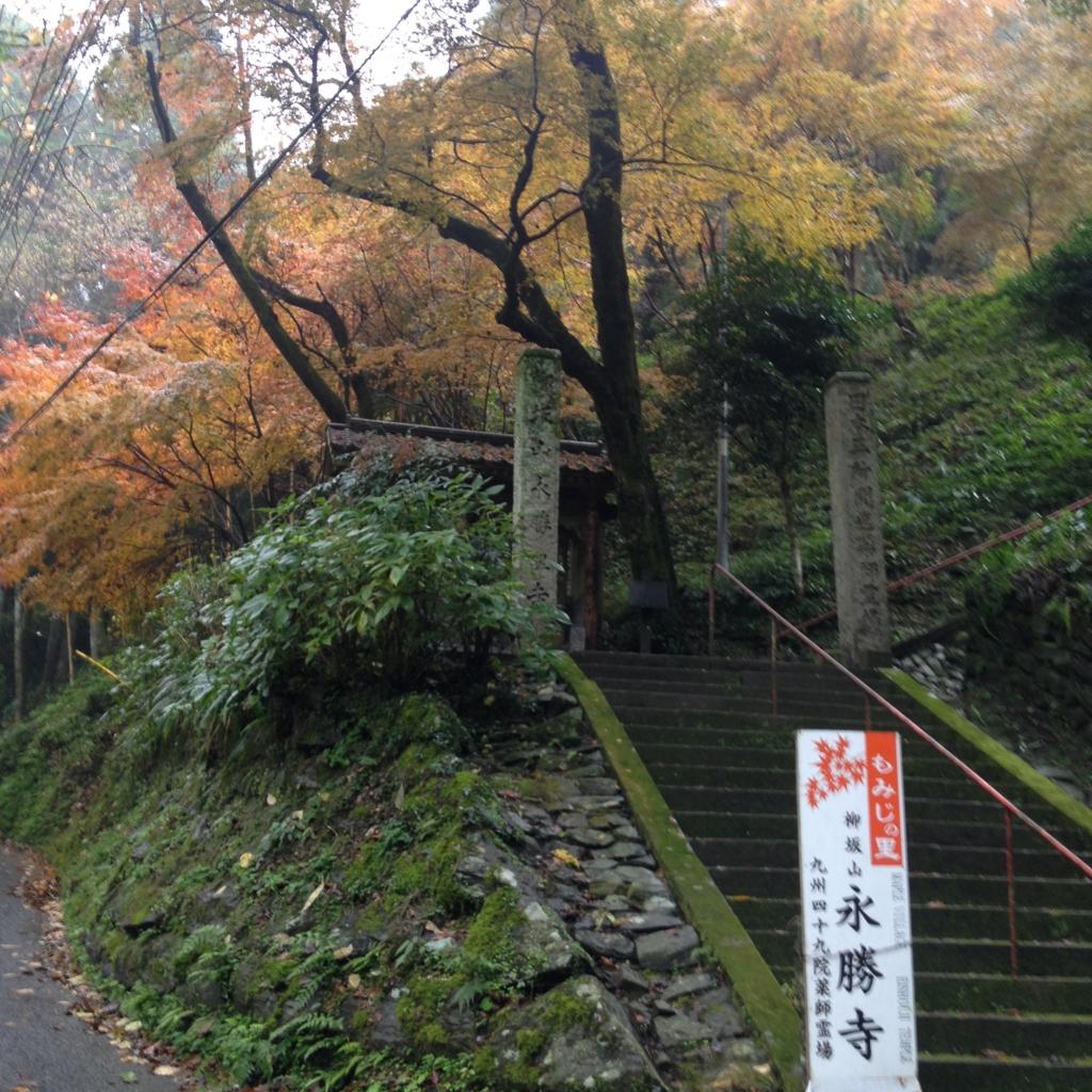 f:id:yamato1111:20161118173257j:plain